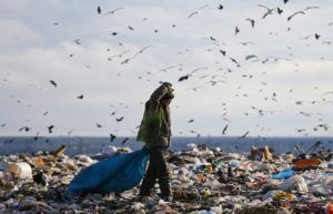"""Дело дорогое, но необходима генеральная уборка на """"кладбищах мусора"""" © Петр Ковалев/ТАСС"""