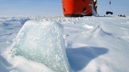 Арктика. © Лев Федосеев/ТАСС