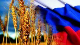 Продовольственный экспорт из России