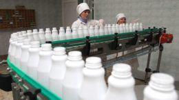 Молочная промышленность Кубани
