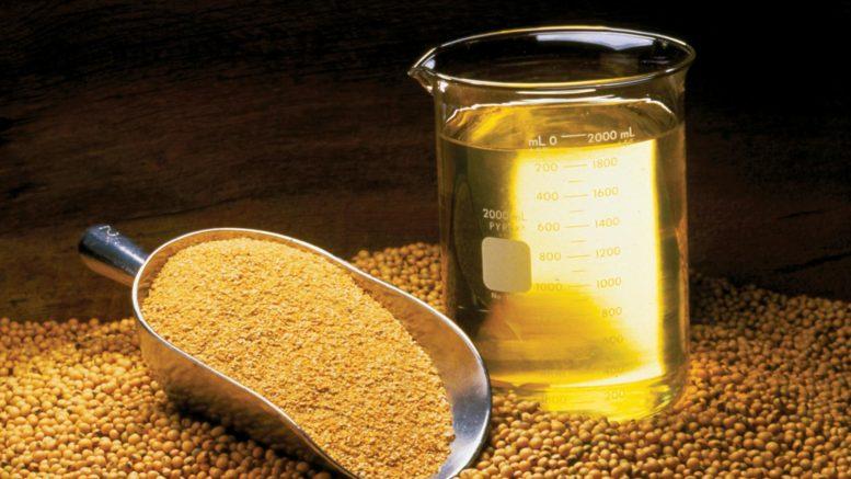 Экспорт соевого масла из Приамурья в КНР за год увеличился почти в четыре раза