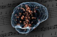 ВРоссии создана новая нейромодель клеток головного мозга