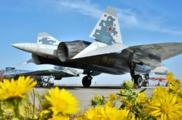 В США боятся, что новое оружие восстановит преимущество России над Западом